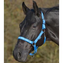 Halster Met Paard Motief Azuur Blauw