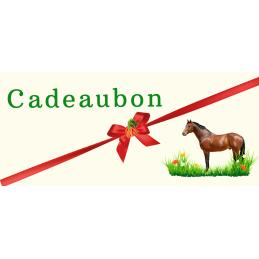 Cadeaubon Giftcard €25,-
