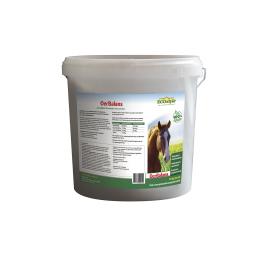 Oerbalans ECOstyle Paard emmer 10kg brokken