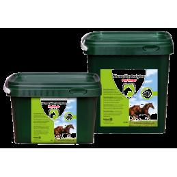 Electrolyten Poeder Paard 2.5 kg